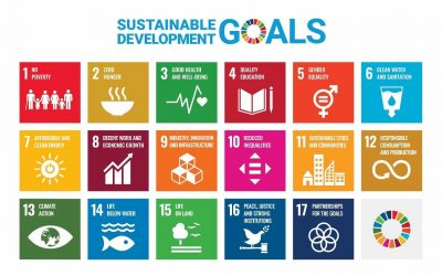 """17 Goals to Transform our World – """"Start-to-SDG workshop for The Belgian – Luxembourg Chambers of Commerce Abroad"""""""